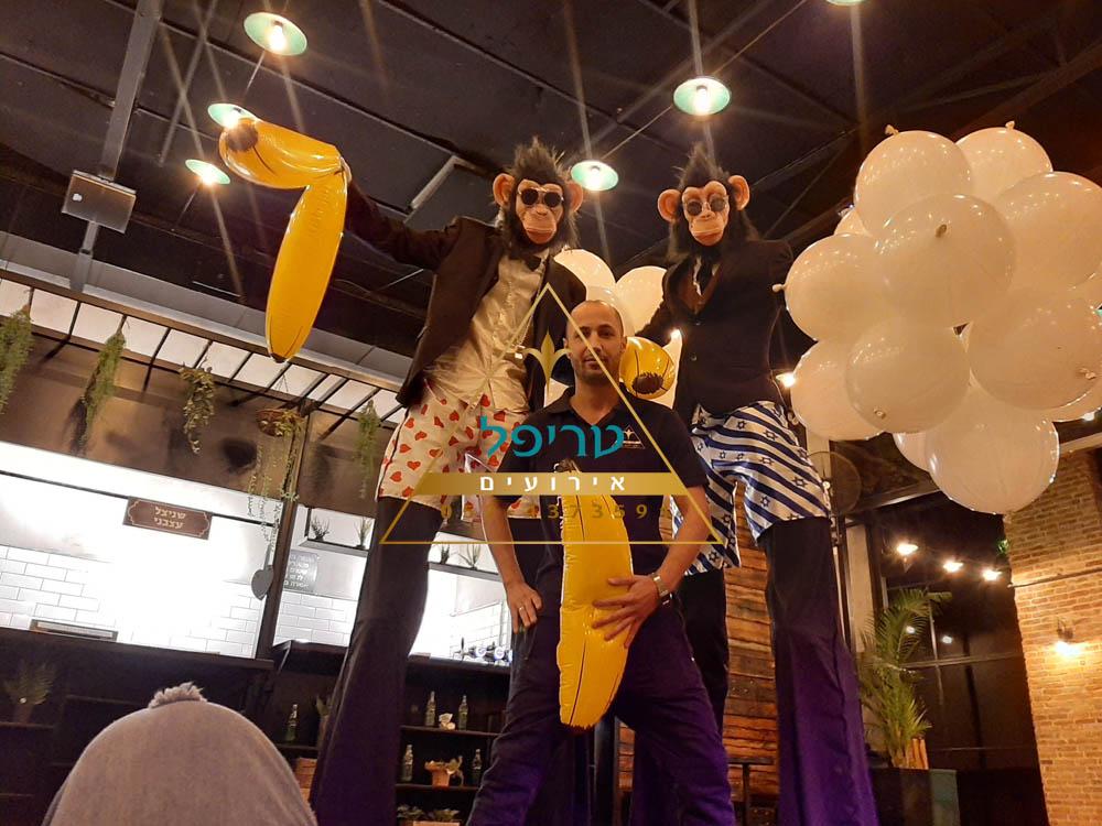 קופים לאירועים , קופיי טריפל אירועים , מסיבת קופים לבת מצווה , מסיבת קופים לבר מצווה , קופים למסיבה , טריפל אטרקציות , קופים באירוע , קופים רוקדים לאירועים