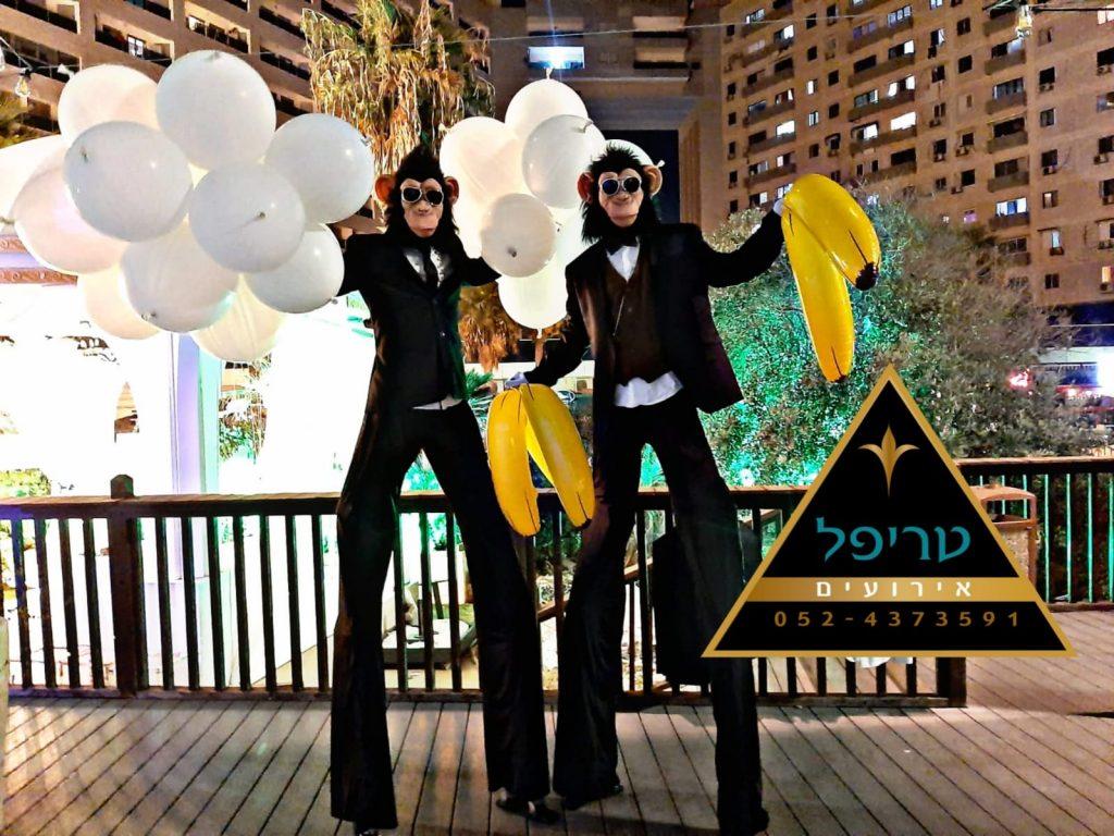 קופים לחתונה , מסיבת קופים לחתונה , טריפל אטרקציות לבת מצווה ,קופים לאירועים ,מסיבת קופים לחתונה , קוף רוקד לחתונה , קופים לחתונה